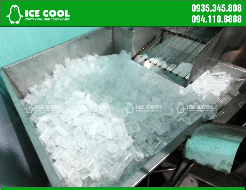 Máy sản xuất đá viên tinh khiết